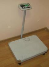 Весы ТВ 1 обычное исполнение